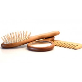 SET DE 2 BROSSE + MIRROIR