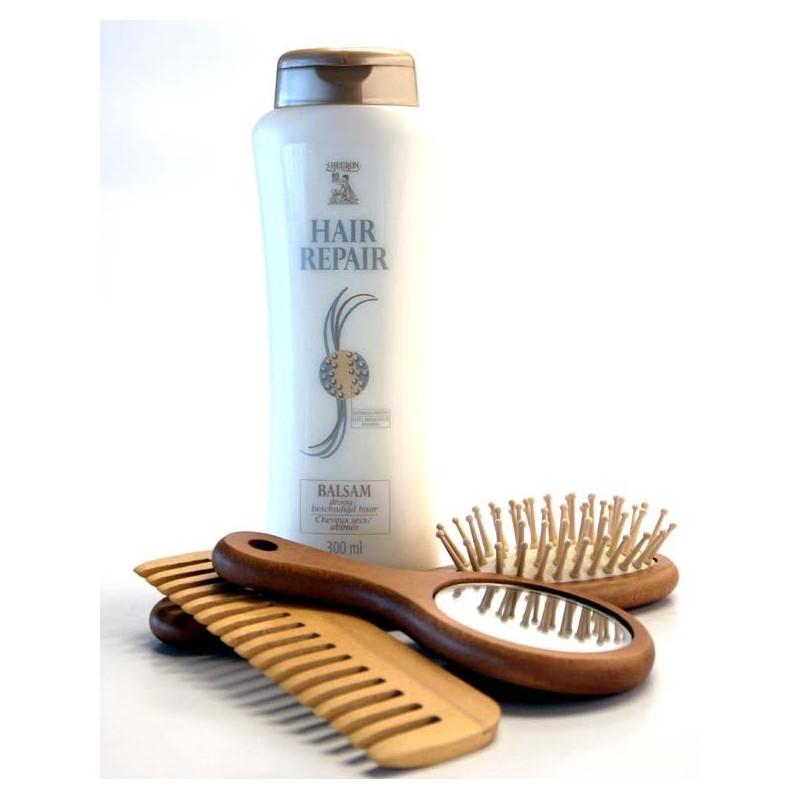 HEGRON HAIR REPAIR SHAMPOO DRY 300 ML